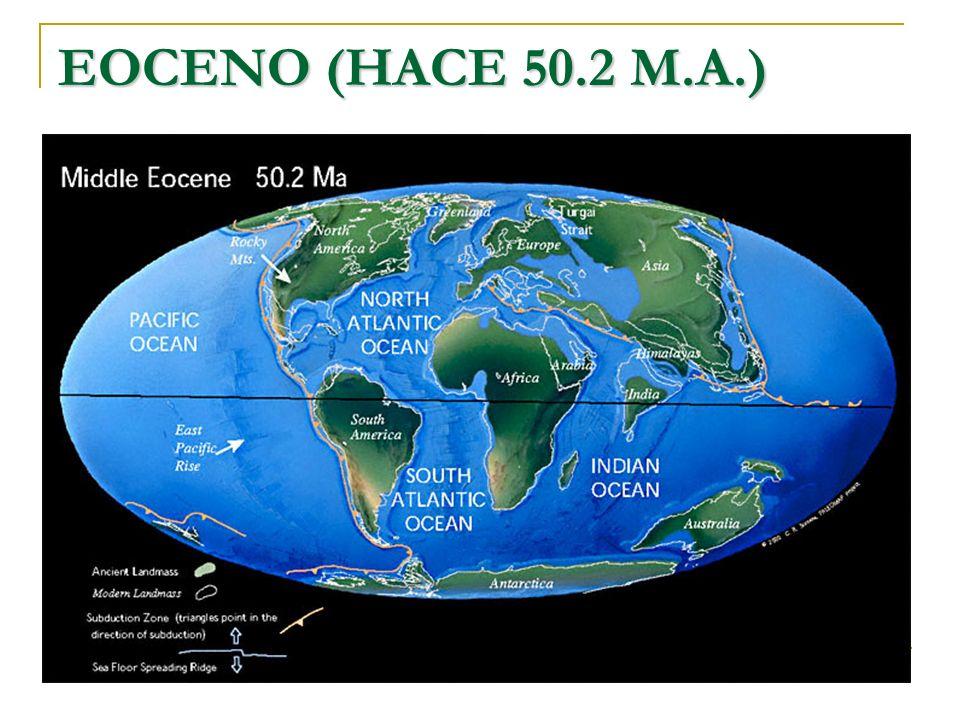EOCENO (HACE 50.2 M.A.)