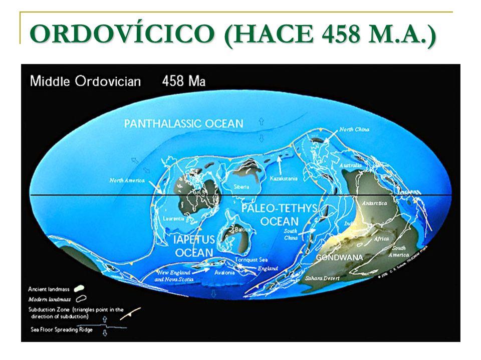 ORDOVÍCICO (HACE 458 M.A.)