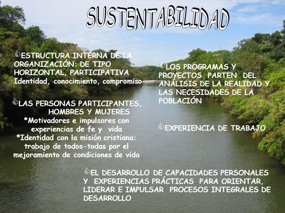 ESTRUCTURA INTERNA DE LA ORGANIZACIÓN: DE TIPO HORIZONTAL, PARTICIPATIVA Identidad, conocimiento, compromiso LOS PROGRAMAS Y PROYECTOS PARTEN DEL ANÁL