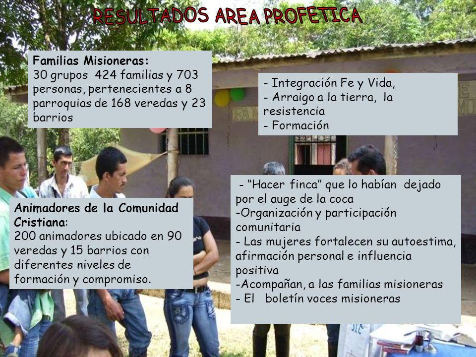 Familias Misioneras: 30 grupos 424 familias y 703 personas, pertenecientes a 8 parroquias de 168 veredas y 23 barrios Animadores de la Comunidad Crist