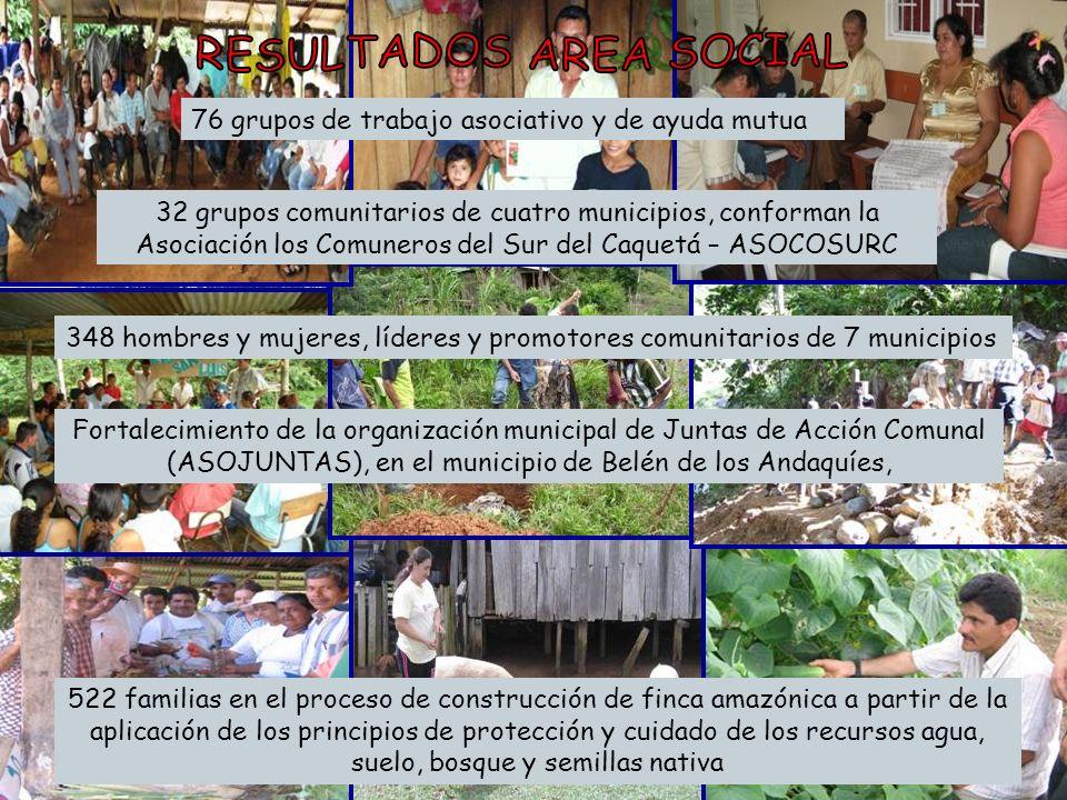 32 grupos comunitarios de cuatro municipios, conforman la Asociación los Comuneros del Sur del Caquetá – ASOCOSURC 76 grupos de trabajo asociativo y d