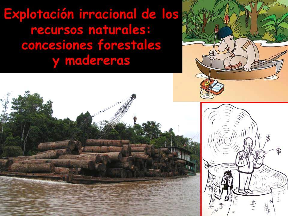 Narcotráfico Entre el 90 y 95% de la población carcelaria en la triple frontera Brasil- Colombia-Perú está presa por tráfico de drogas C O C A Í N A H E R O Í N A Rutas de ingreso de la cocaína y heroína en la Amazonía brasileña