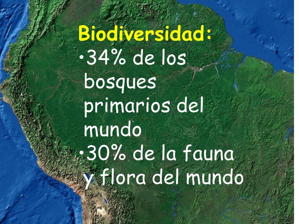 Biodiversidad: 34% de los bosques primarios del mundo 30% de la fauna y flora del mundo