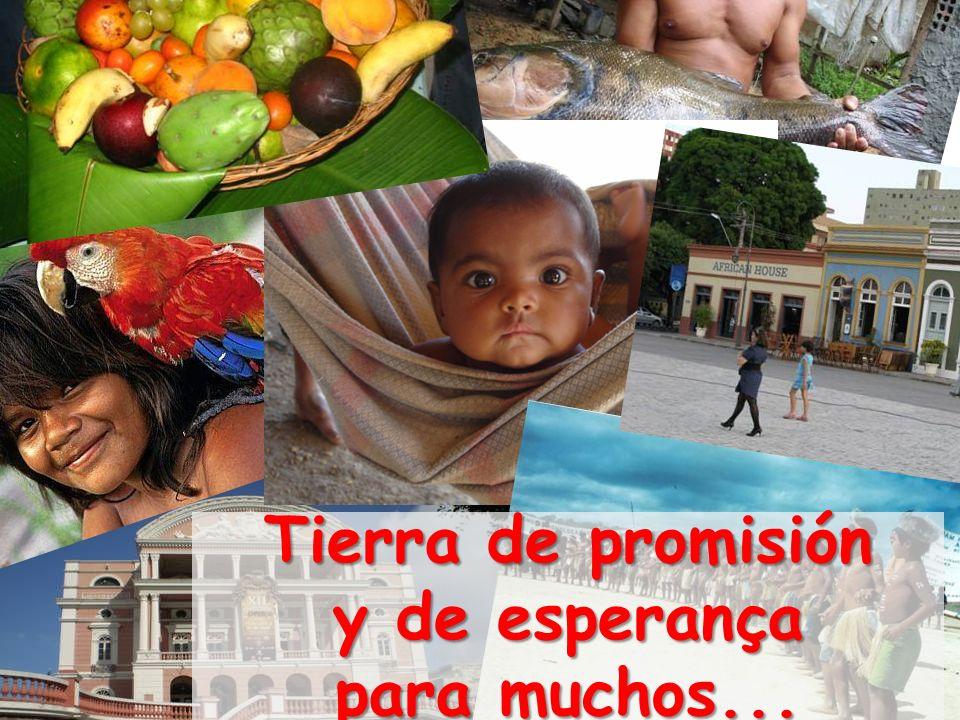 El narcotráfico, la bio - piratería, la guerrilla, los para- militares, las mafias de todo tipo, la internacionalización de la Amazonía… Y como respuesta a todo eso: Visión militarista de los problemas de fronteras