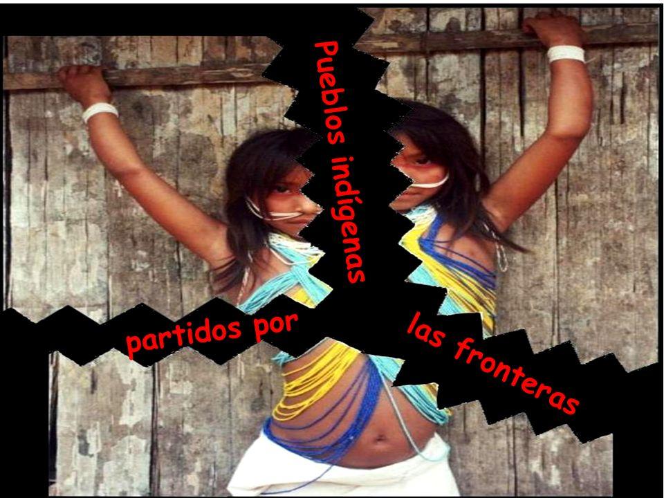 Urbanización acelerada de la Amazonía 70% de la población amazónica vive en las ciudades Belém (1,6 millones) Santarém (300 mil) Itacoatiara (80 mil) Manaus (1,8 millones) Parintins (105 mil) Tefé (70 mil) Leticia - Tabatinga (80 mil) Iquitos (400 mil) Pucalpa (40 mil) Yurimaguas (30 mil) Manacapuru (82 mil)