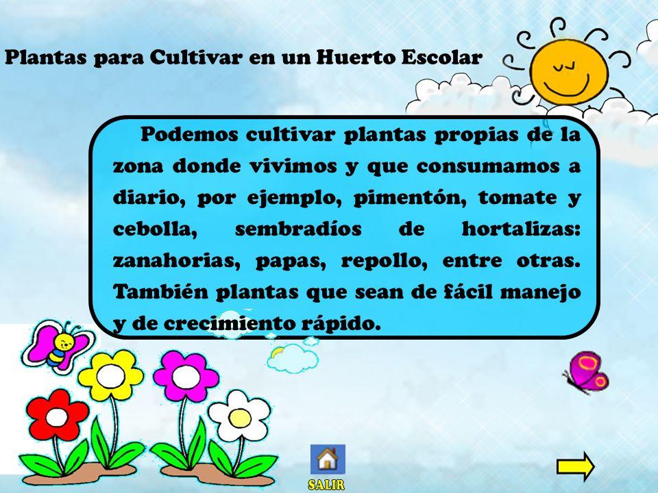 Plantas para Cultivar en un Huerto Escolar Podemos cultivar plantas propias de la zona donde vivimos y que consumamos a diario, por ejemplo, pimentón,