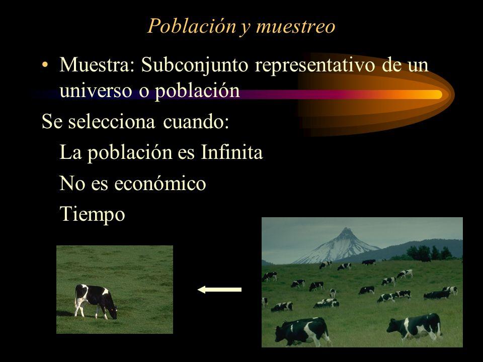 Población y muestreo Muestra: Subconjunto representativo de un universo o población Se selecciona cuando: La población es Infinita No es económico Tie