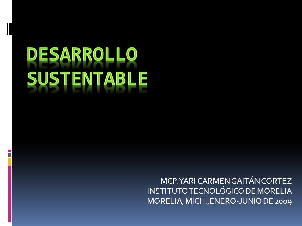 MCP. YARI CARMEN GAITÁN CORTEZ INSTITUTO TECNOLÓGICO DE MORELIA MORELIA, MICH.,ENERO-JUNIO DE 2009
