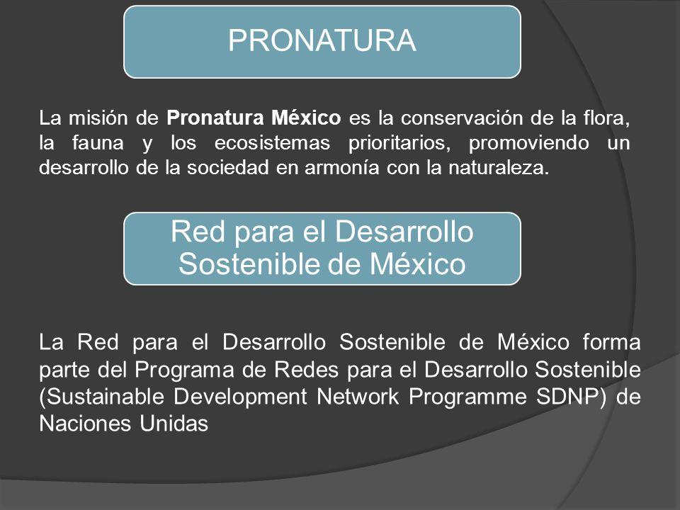 PRONATURA La misión de Pronatura México es la conservación de la flora, la fauna y los ecosistemas prioritarios, promoviendo un desarrollo de la sociedad en armonía con la naturaleza.