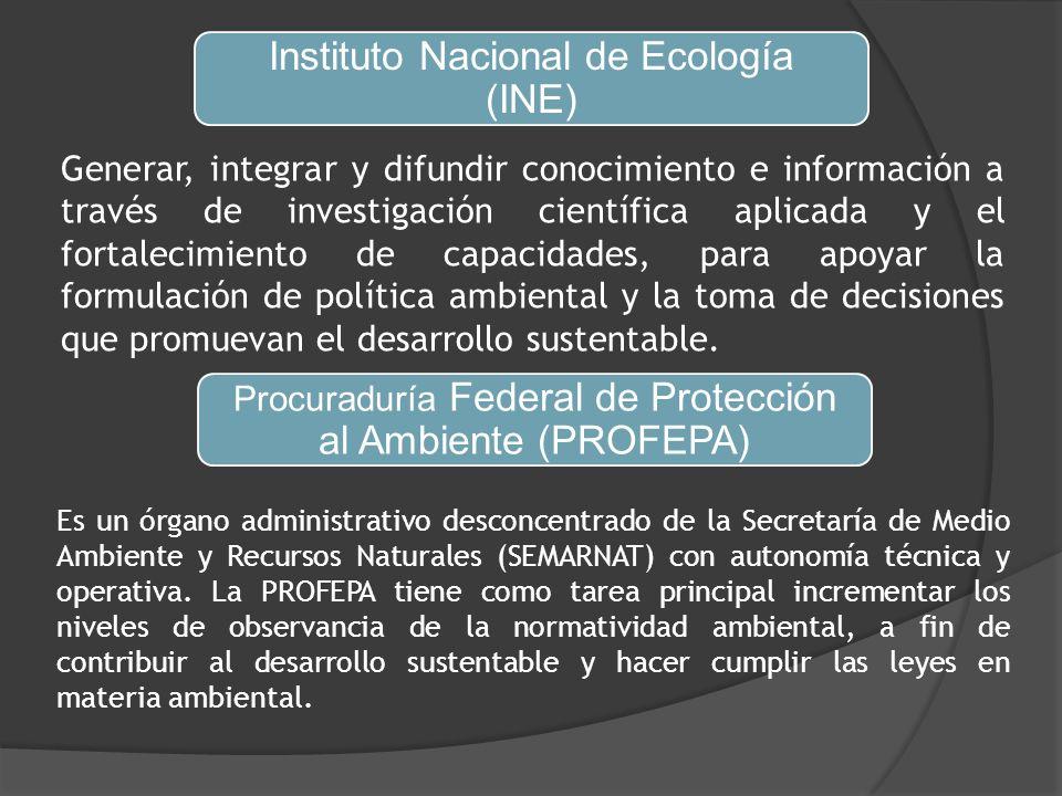 Instituto Nacional de Ecología (INE) Generar, integrar y difundir conocimiento e información a través de investigación científica aplicada y el fortalecimiento de capacidades, para apoyar la formulación de política ambiental y la toma de decisiones que promuevan el desarrollo sustentable.