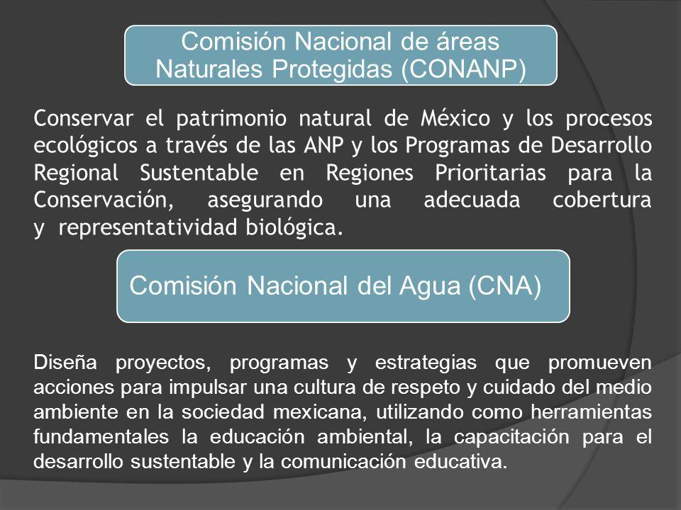 Comisión Nacional de áreas Naturales Protegidas (CONANP) Conservar el patrimonio natural de México y los procesos ecológicos a través de las ANP y los Programas de Desarrollo Regional Sustentable en Regiones Prioritarias para la Conservación, asegurando una adecuada cobertura y representatividad biológica.