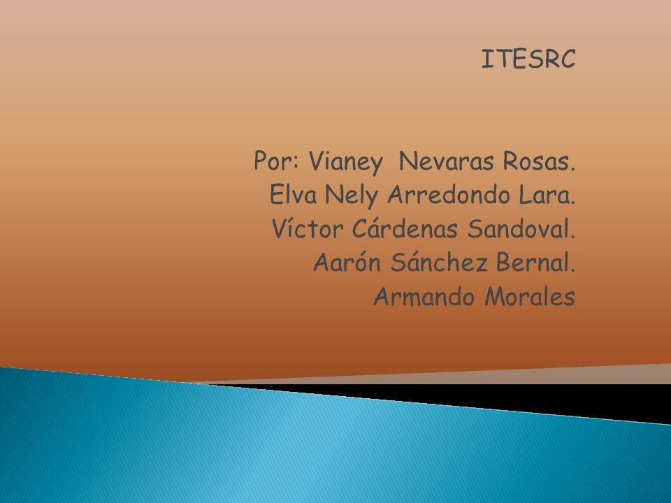 ITESRC Por: Vianey Nevaras Rosas. Elva Nely Arredondo Lara. Víctor Cárdenas Sandoval. Aarón Sánchez Bernal. Armando Morales
