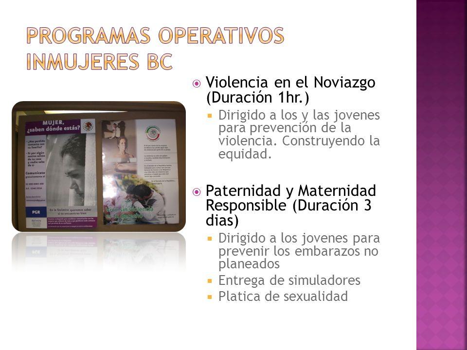 Violencia en el Noviazgo (Duración 1hr.) Dirigido a los y las jovenes para prevención de la violencia. Construyendo la equidad. Paternidad y Maternida