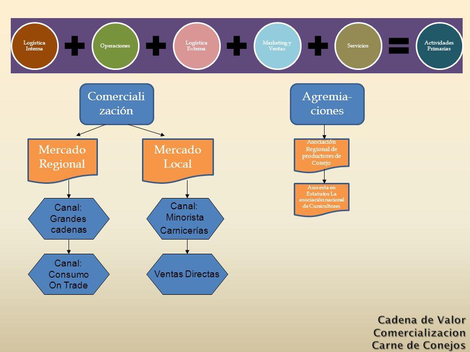 Logística Interna Operaciones Logística Externa Marketing y Ventas Servicios Actividades Primarias Aun esta en Estatutos La asociación nacional de Cun