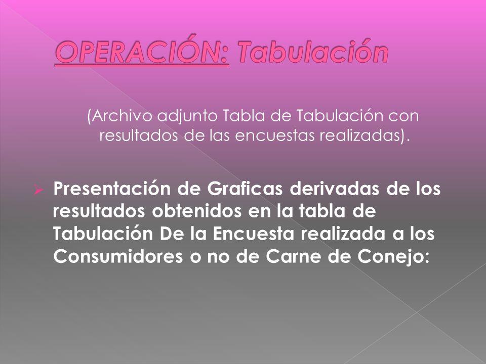 (Archivo adjunto Tabla de Tabulación con resultados de las encuestas realizadas).