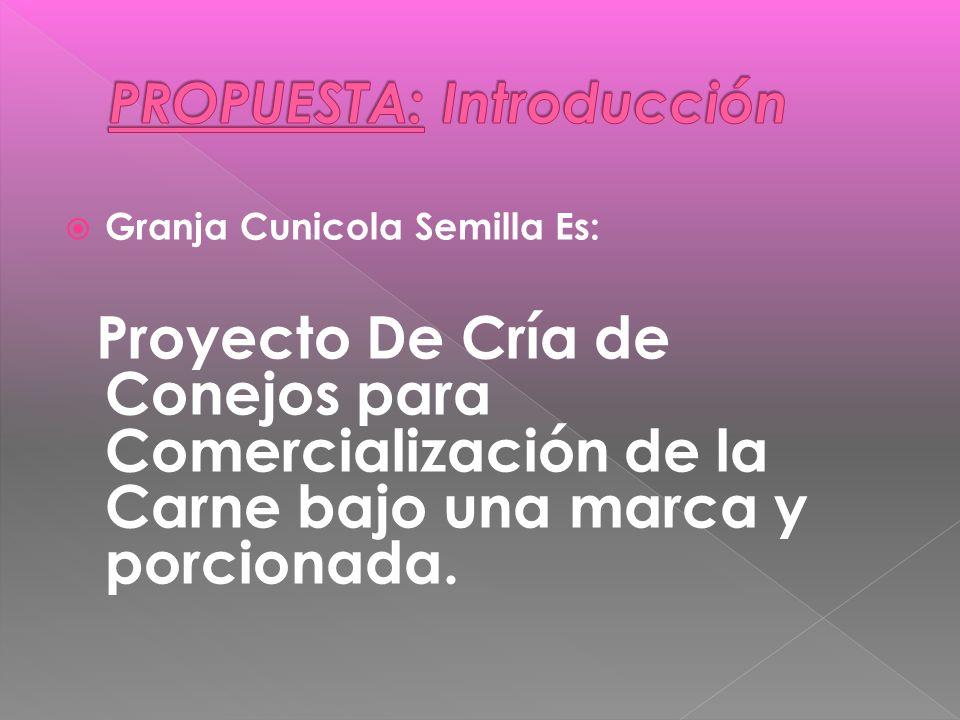 Granja Cunicola Semilla Es: Proyecto De Cría de Conejos para Comercialización de la Carne bajo una marca y porcionada.