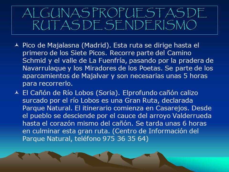 ALGUNAS PROPUESTAS DE RUTAS DE SENDERISMO Pico de Majalasna (Madrid). Esta ruta se dirige hasta el primero de los Siete Picos. Recorre parte del Camin