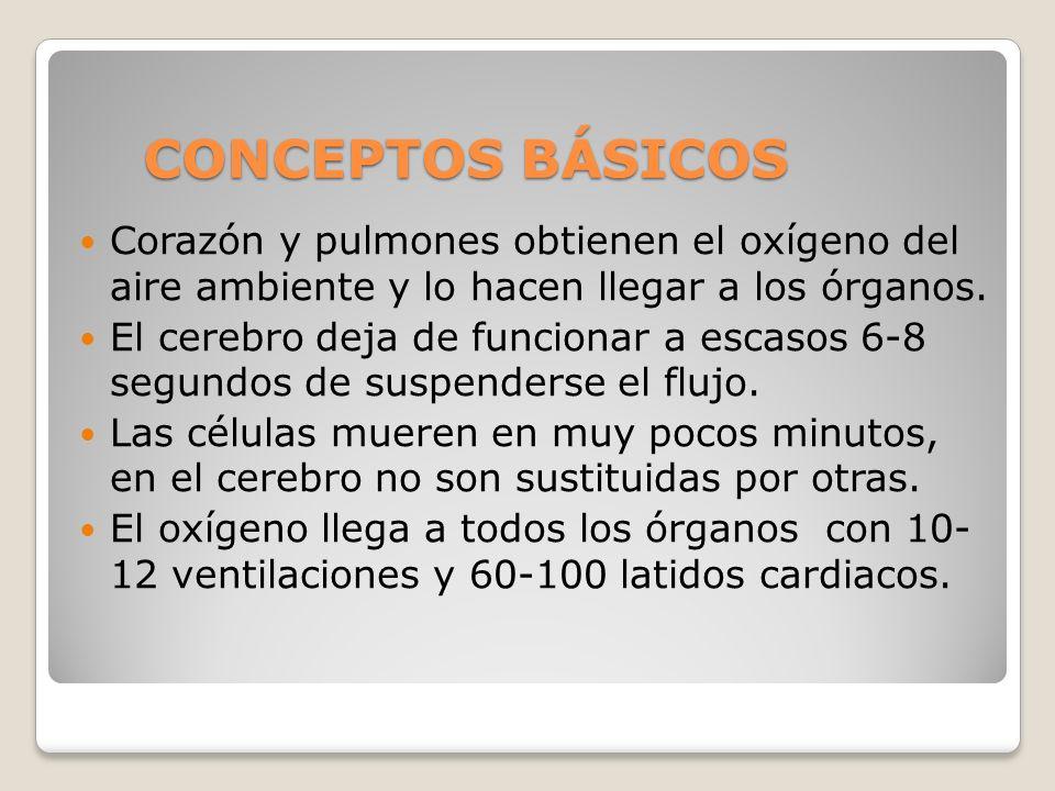 SECUENCIAS DE RESPIRACIÓN-COMPRESIÓN Combinar boca-boca y compresión torácica: 30 compresiones + 2 ventilaciones