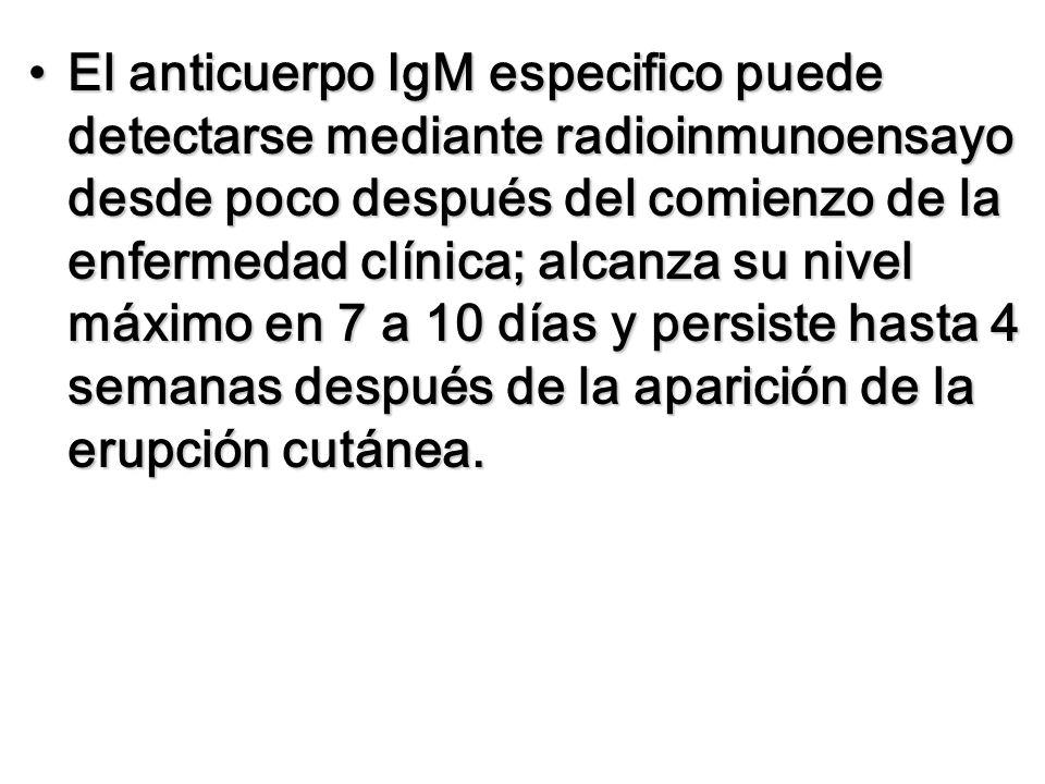 El anticuerpo IgM especifico puede detectarse mediante radioinmunoensayo desde poco después del comienzo de la enfermedad clínica; alcanza su nivel má