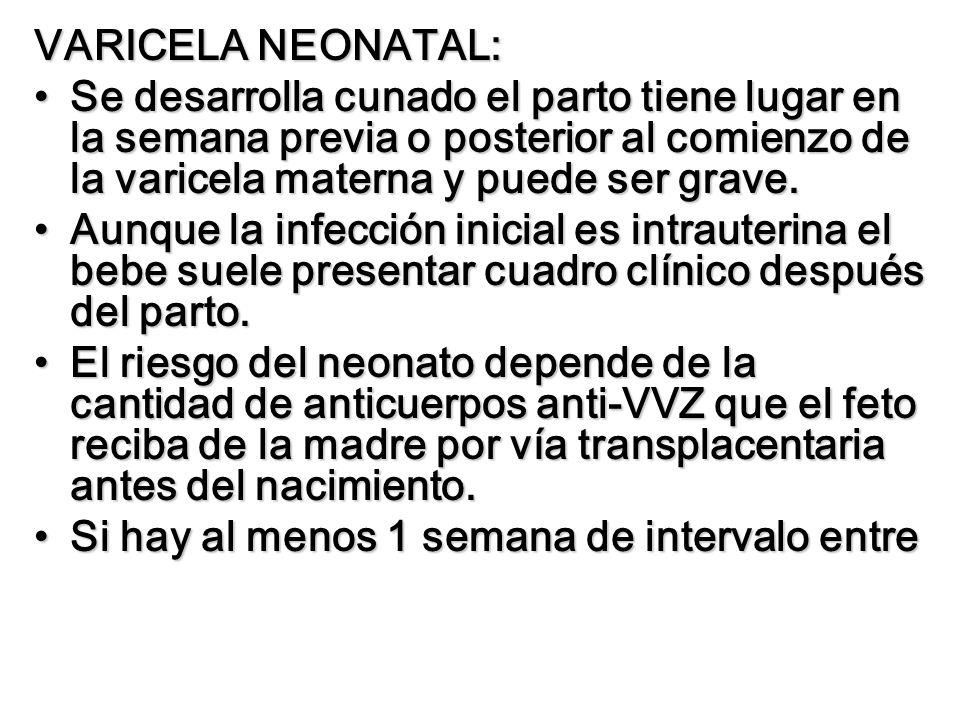 VARICELA NEONATAL: Se desarrolla cunado el parto tiene lugar en la semana previa o posterior al comienzo de la varicela materna y puede ser grave.Se d