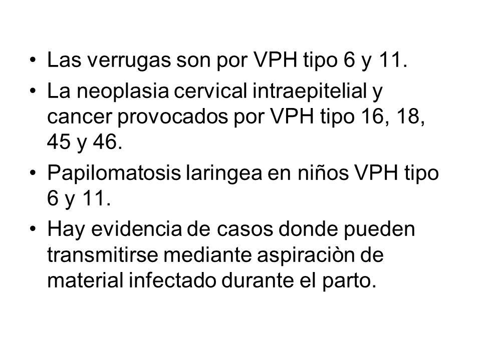 Las verrugas son por VPH tipo 6 y 11. La neoplasia cervical intraepitelial y cancer provocados por VPH tipo 16, 18, 45 y 46. Papilomatosis laringea en