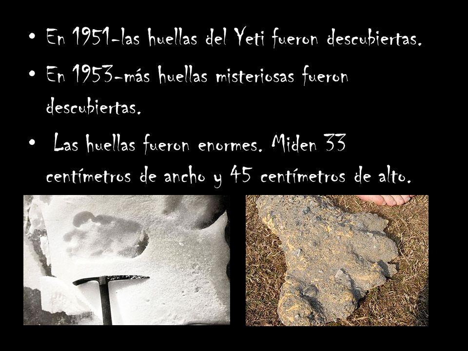 En 1951-las huellas del Yeti fueron descubiertas. En 1953-más huellas misteriosas fueron descubiertas. Las huellas fueron enormes. Miden 33 centímetro
