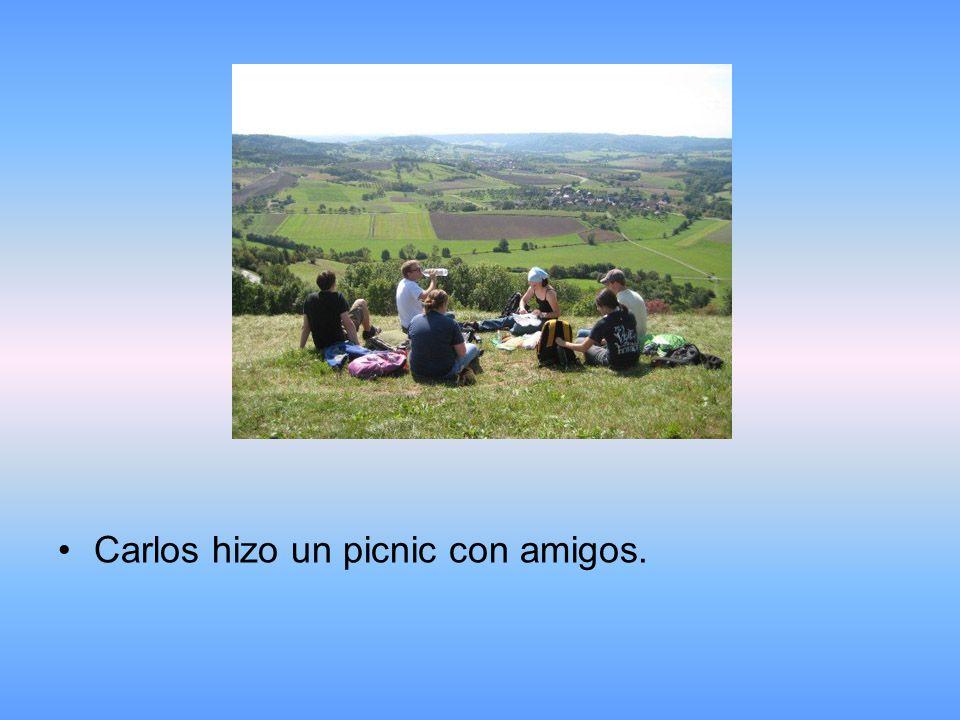 Carlos hizo un picnic con amigos.
