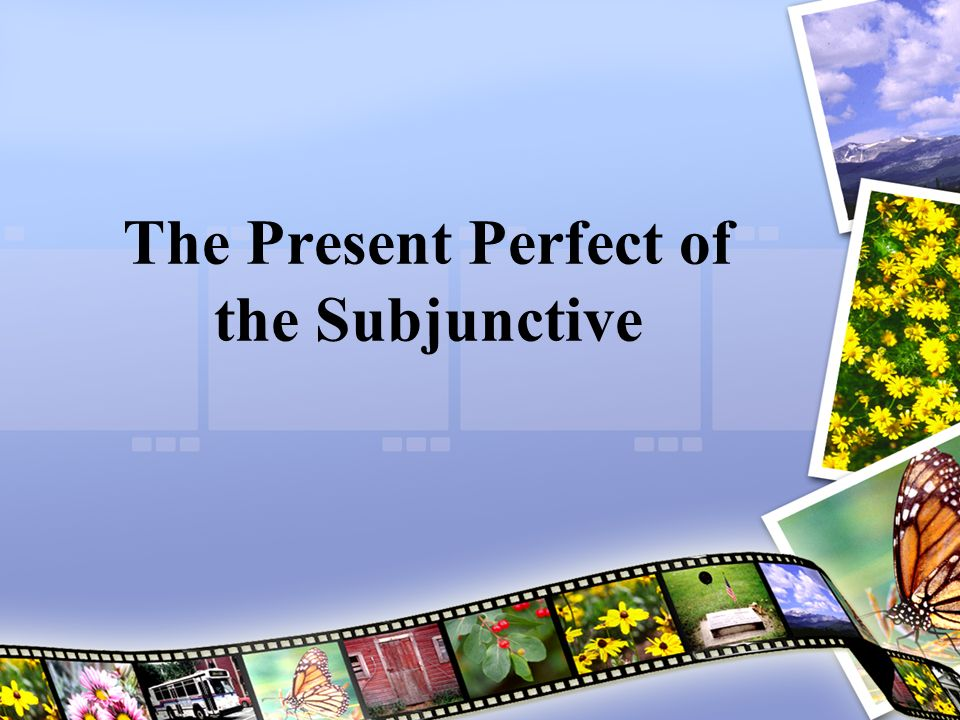 Present Perfect of the Subjunctive The present perfect subjunctive refers to actions or situations that may have occurred before the action of the main verb.