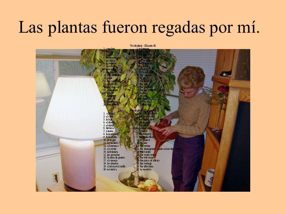 Las plantas fueron regadas por mí.