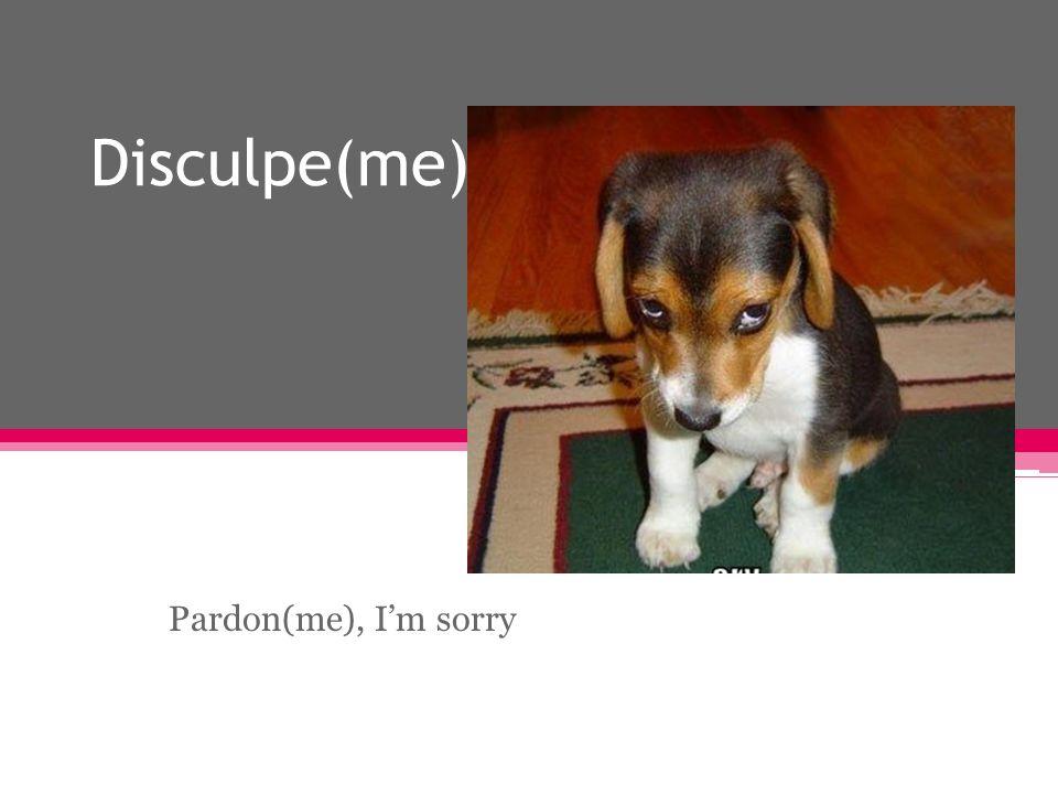 Disculpe(me) Pardon(me), Im sorry