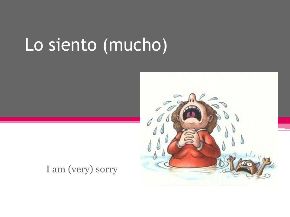 Lo siento (mucho) I am (very) sorry