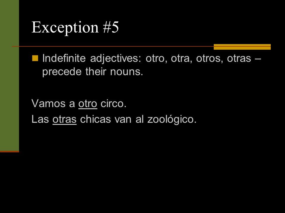 Exception #5 Indefinite adjectives: otro, otra, otros, otras – precede their nouns.