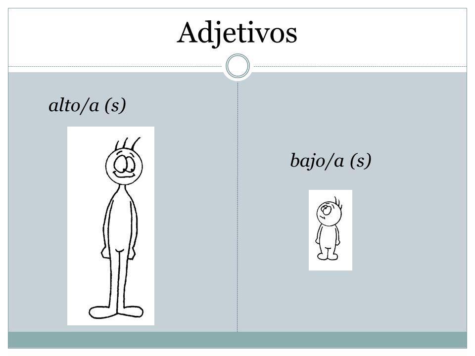 Adjetivos bajo/a (s) alto/a (s)