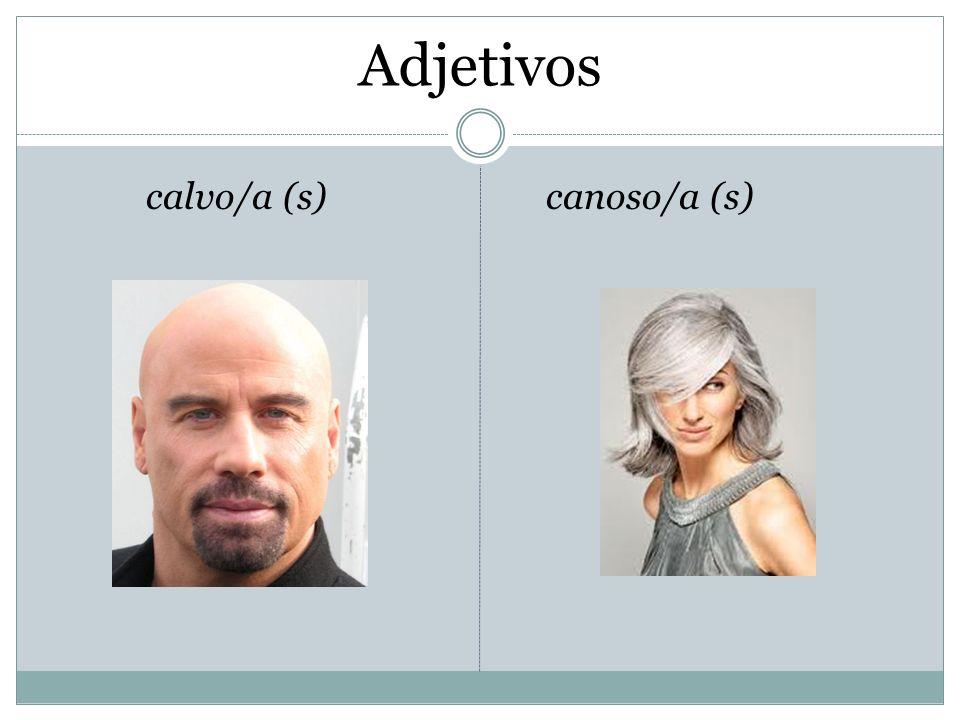 Adjetivos calvo/a (s)canoso/a (s)