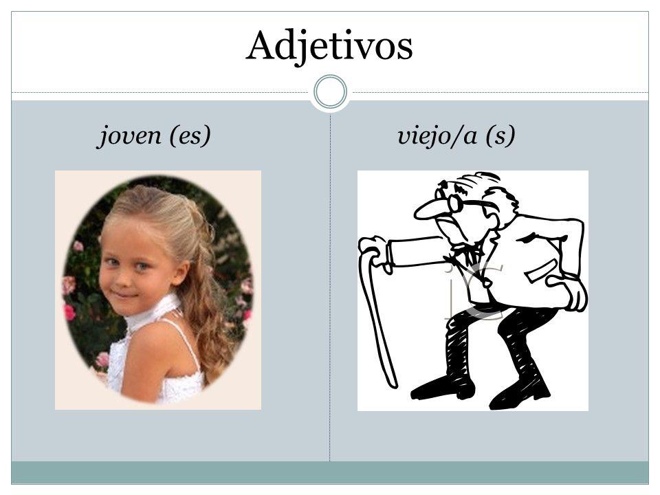 Adjetivos joven (es)viejo/a (s)