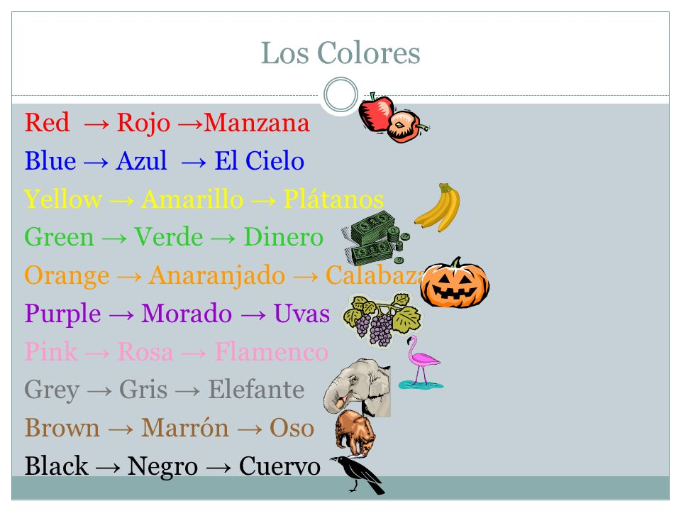 Los Colores Red Rojo Manzana Blue Azul El Cielo Yellow Amarillo Plátanos Green Verde Dinero Orange Anaranjado Calabaza Purple Morado Uvas Pink Rosa Fl