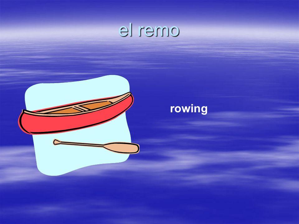 el remo rowing