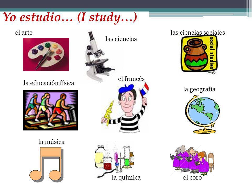 Yo estudio… (I study…) el arte las ciencias las ciencias sociales la educación física el francés la geografía la químicael coro la música