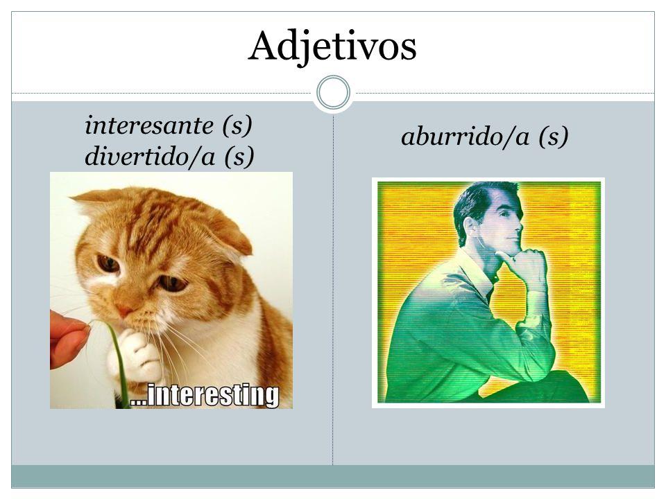 Adjetivos organizado/a (s) ordenado/a (s) desorganizado/a (s) desordenado/a (s)