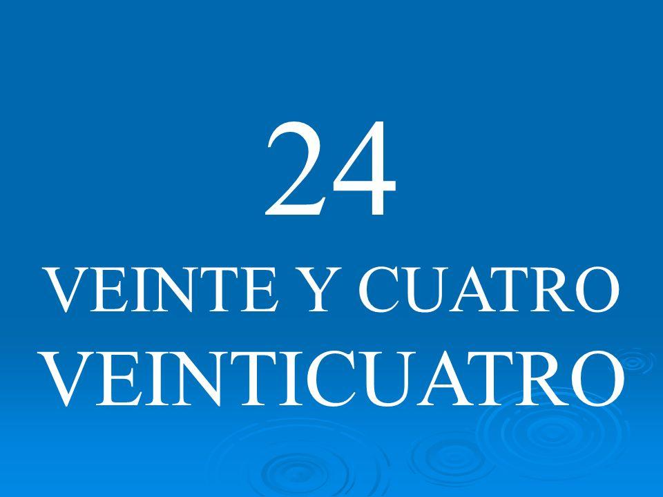 24 VEINTE Y CUATRO VEINTICUATRO
