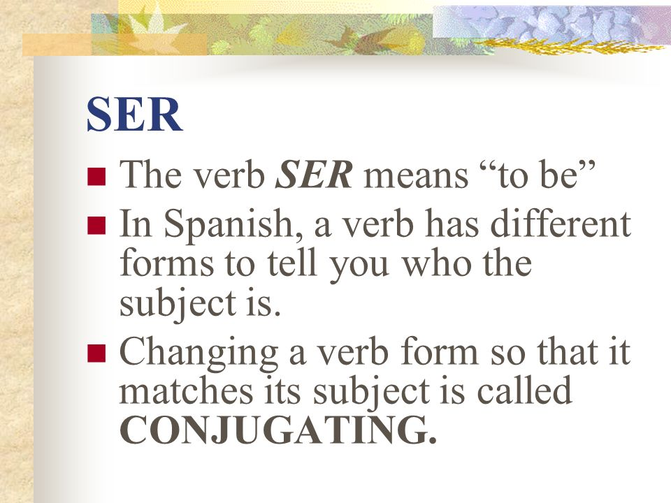 SER The verb SER means to be In Spanish, a verb has different forms to tell you who the subject is.