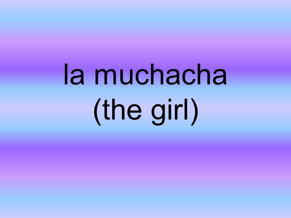 la muchacha (the girl)