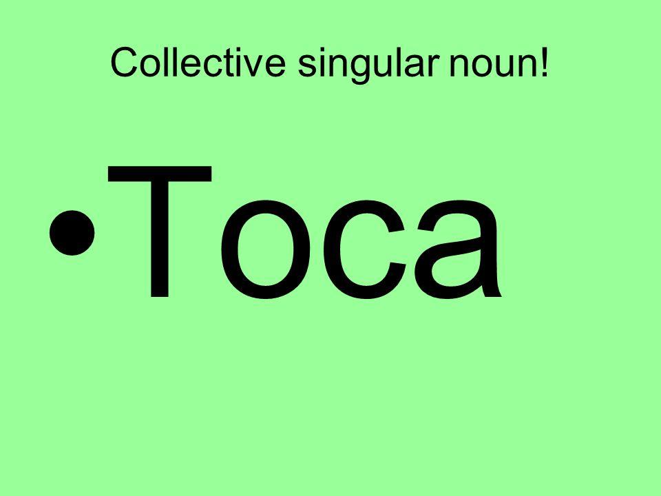 Collective singular noun! Toca