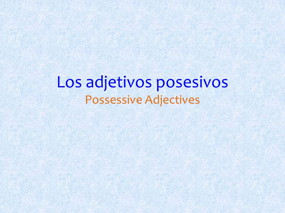 Los adjetivos posesivos Possessive Adjectives