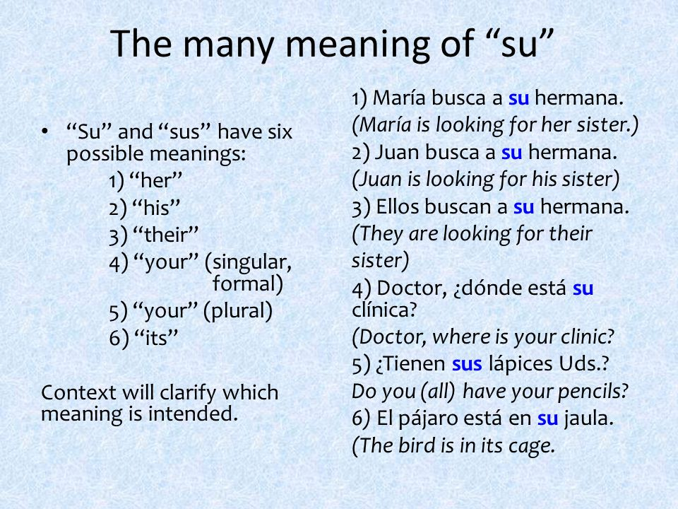 The many meaning of su Su and sus have six possible meanings: 1) her 2) his 3) their 4) your (singular, formal) 5) your (plural) 6) its Context will c