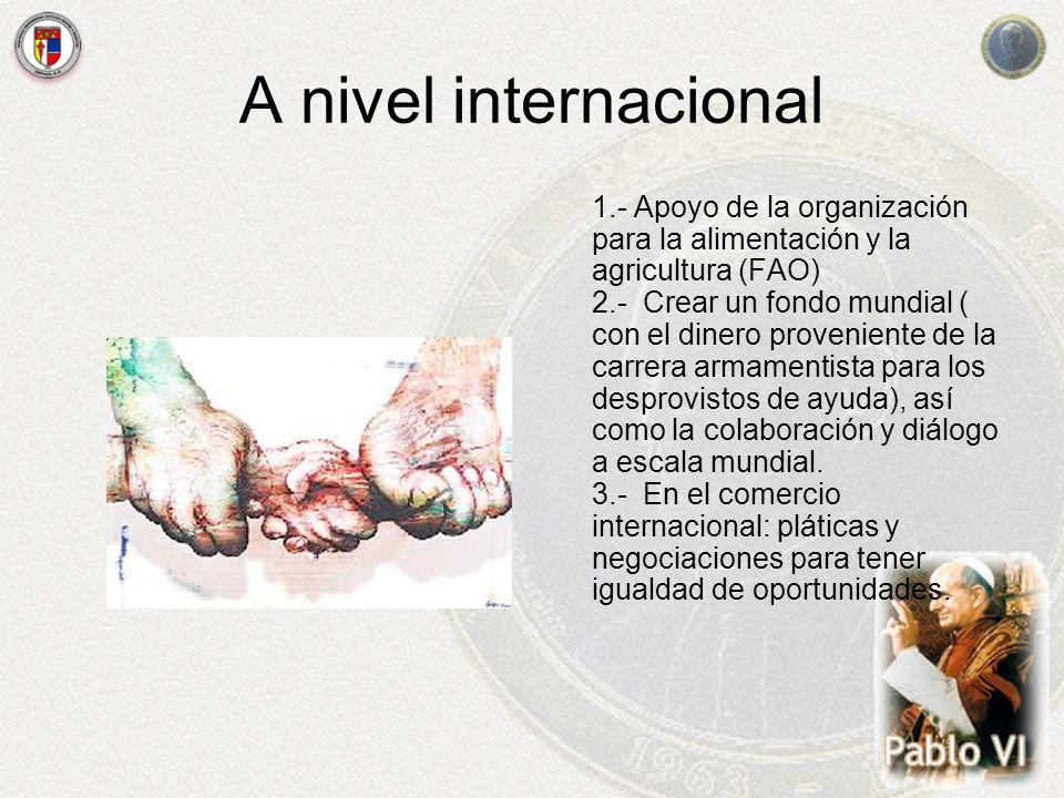 A nivel internacional 1.- Apoyo de la organización para la alimentación y la agricultura (FAO) 2.- Crear un fondo mundial ( con el dinero proveniente