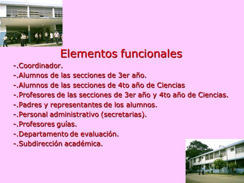Elementos funcionales -.Coordinador. -.Alumnos de las secciones de 3er año. -.Alumnos de las secciones de 4to año de Ciencias -.Profesores de las secc