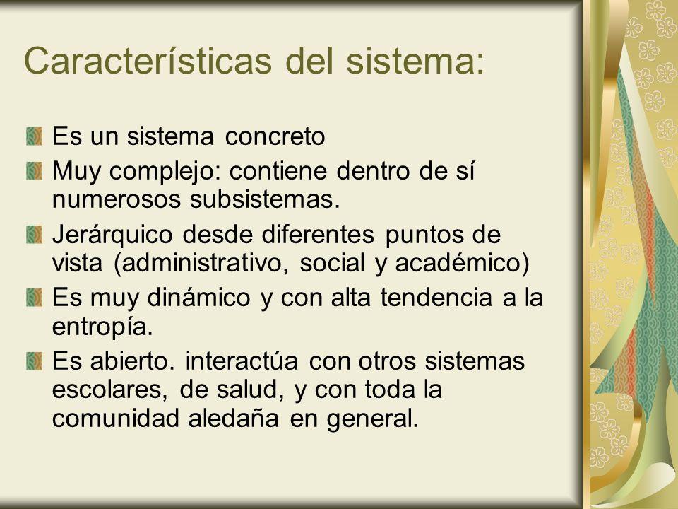 Características del sistema: Es un sistema concreto Muy complejo: contiene dentro de sí numerosos subsistemas. Jerárquico desde diferentes puntos de v