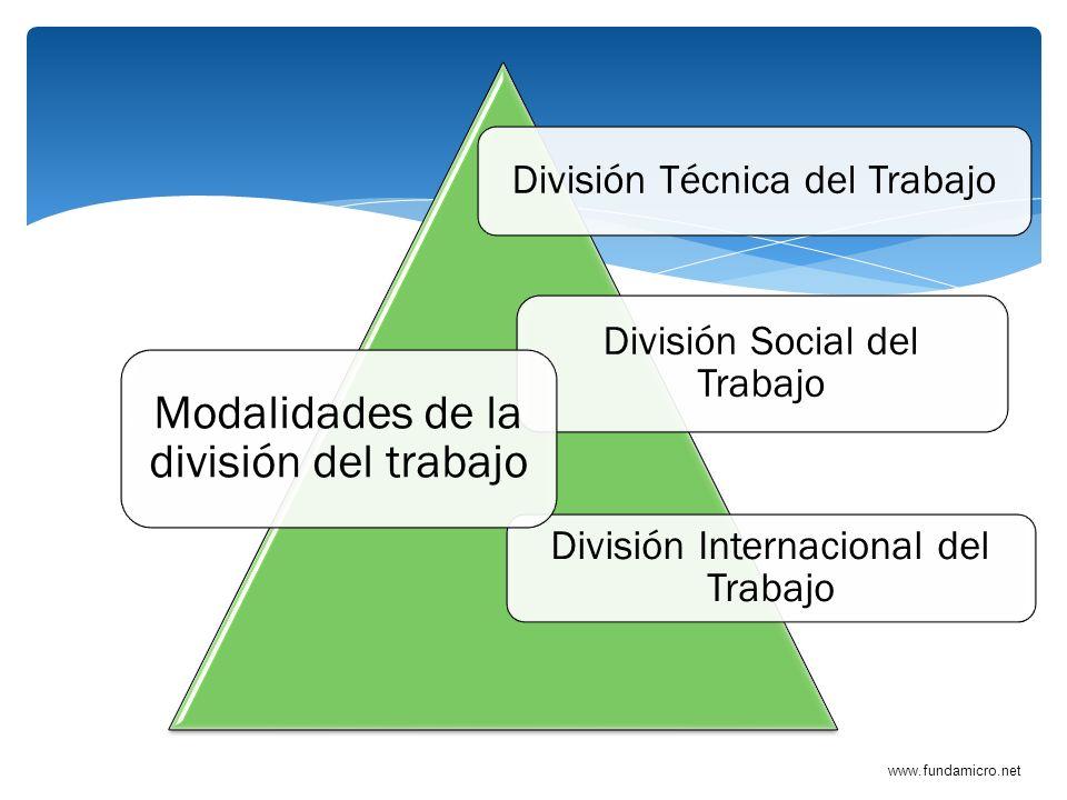 www.fundamicro.net División Técnica del Trabajo División Social del Trabajo División Internacional del Trabajo Modalidades de la división del trabajo