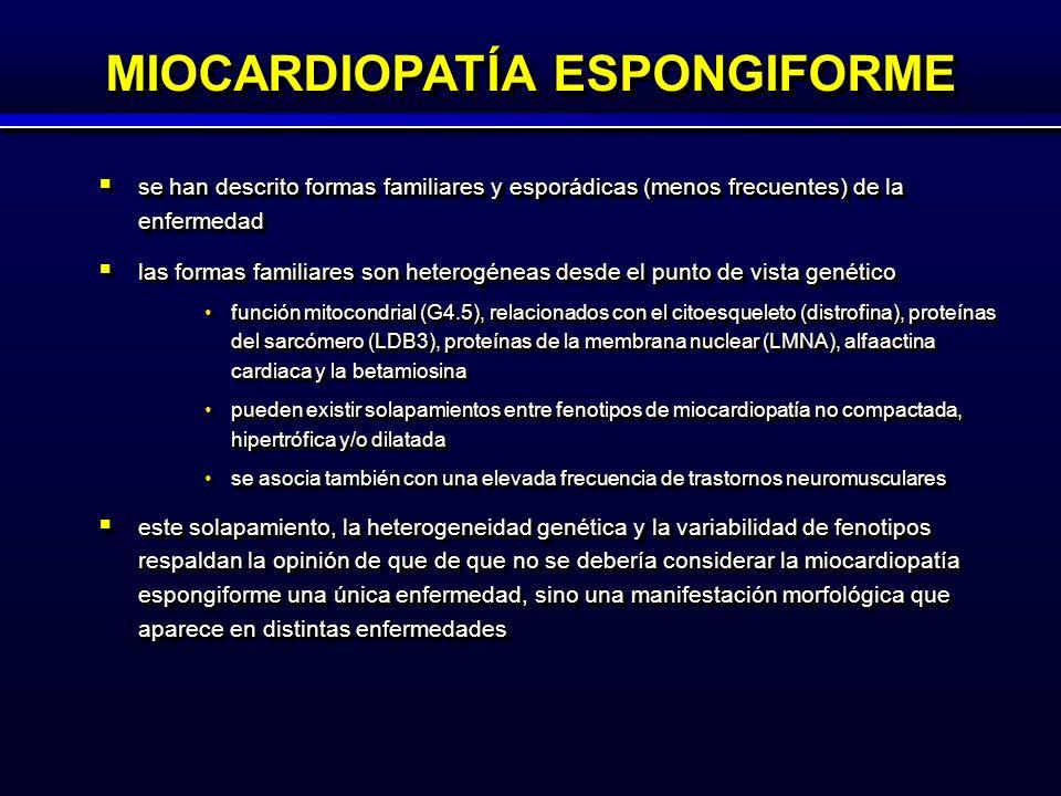 se han descrito formas familiares y esporádicas (menos frecuentes) de la enfermedad se han descrito formas familiares y esporádicas (menos frecuentes) de la enfermedad las formas familiares son heterogéneas desde el punto de vista genético las formas familiares son heterogéneas desde el punto de vista genético función mitocondrial (G4.5), relacionados con el citoesqueleto (distrofina), proteínas del sarcómero (LDB3), proteínas de la membrana nuclear (LMNA), alfaactina cardiaca y la betamiosinafunción mitocondrial (G4.5), relacionados con el citoesqueleto (distrofina), proteínas del sarcómero (LDB3), proteínas de la membrana nuclear (LMNA), alfaactina cardiaca y la betamiosina pueden existir solapamientos entre fenotipos de miocardiopatía no compactada, hipertrófica y/o dilatadapueden existir solapamientos entre fenotipos de miocardiopatía no compactada, hipertrófica y/o dilatada se asocia también con una elevada frecuencia de trastornos neuromuscularesse asocia también con una elevada frecuencia de trastornos neuromusculares este solapamiento, la heterogeneidad genética y la variabilidad de fenotipos respaldan la opinión de que de que no se debería considerar la miocardiopatía espongiforme una única enfermedad, sino una manifestación morfológica que aparece en distintas enfermedades este solapamiento, la heterogeneidad genética y la variabilidad de fenotipos respaldan la opinión de que de que no se debería considerar la miocardiopatía espongiforme una única enfermedad, sino una manifestación morfológica que aparece en distintas enfermedades se han descrito formas familiares y esporádicas (menos frecuentes) de la enfermedad se han descrito formas familiares y esporádicas (menos frecuentes) de la enfermedad las formas familiares son heterogéneas desde el punto de vista genético las formas familiares son heterogéneas desde el punto de vista genético función mitocondrial (G4.5), relacionados con el citoesqueleto (distrofina), proteínas del sarcómero (LDB3), proteínas de